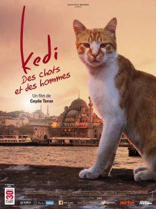 Kedi (2016) เมืองแมว